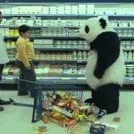 Never Say No To Panda Campaign